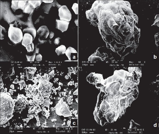 Scanning electron micrographs of (a) β-CD, (b) CL β-CD, (c) pravastatin sodium, and (d) PS-loaded CL β-CD