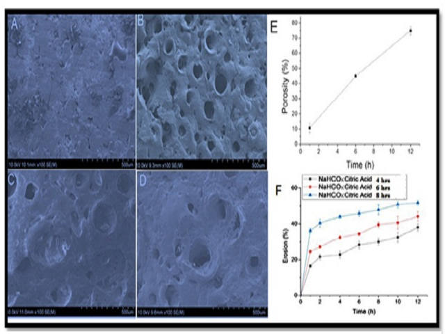 Porosity studies of floating Tablets by scanning electron micrography for batch F7