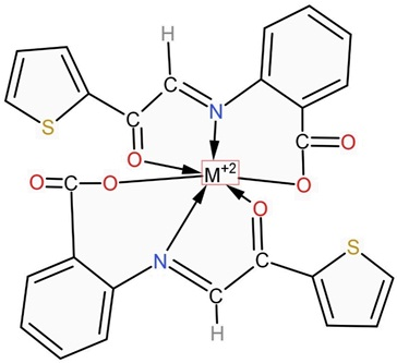 Chemical Structure of Metal Complex. M = Mn (II)/Co (II)