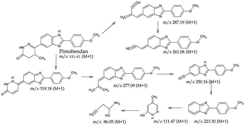 Figure 3: Parent and product ion mass spectrum of PBD and Proposed fragmentation pathways
