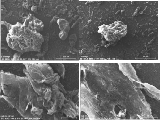 SEM for microsponges of drug and a) Eudragit b) Ethyl cellulose